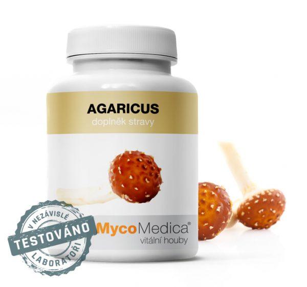 Agaricus - Žampion mandlový, houba se schopností zvýšit imunitu