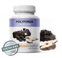 Polyporus – Choroš oríš Mycomedica