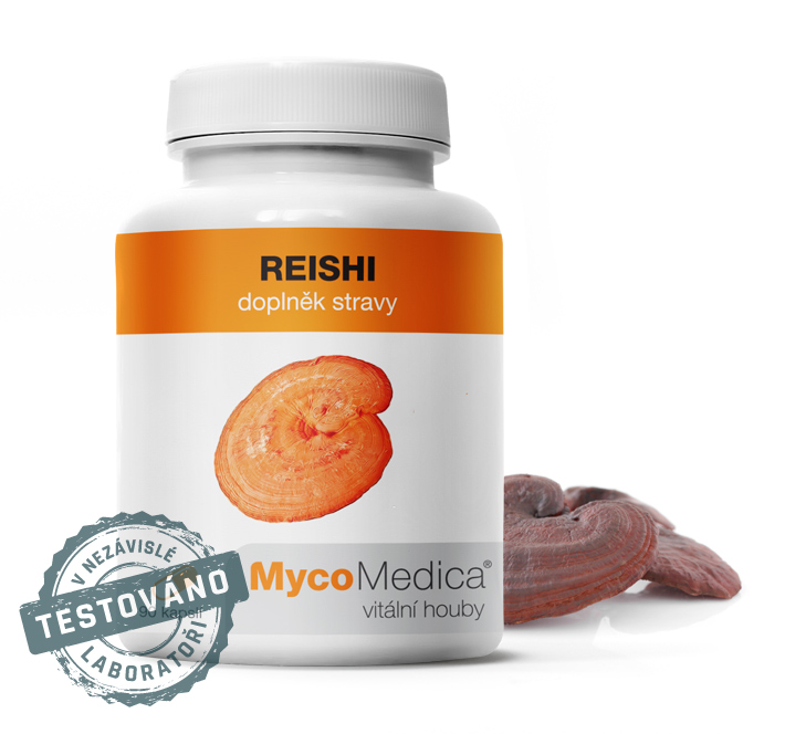 Reishi – Lesklokorka – vitalizující houba