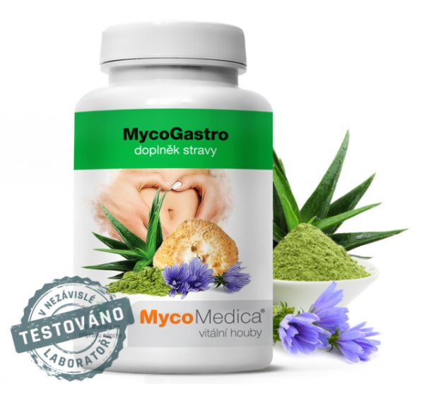 Bylinná podpora trávení - MycoGastro