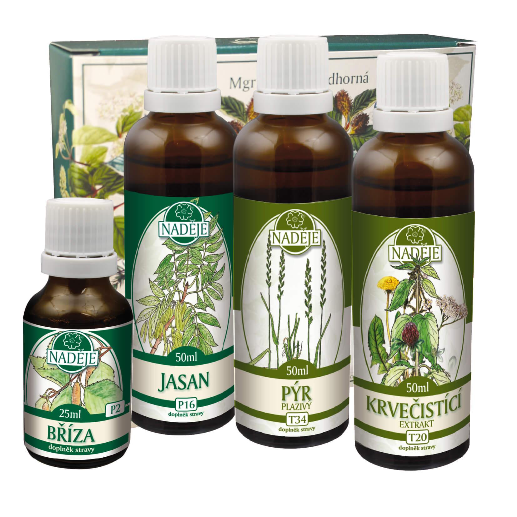 Byliny na detox - Doplněk z bylin jako pomoc při detoxikaci a regeneraci organismu Jarmila Podhorná Naděje - Bylinkový Fénix