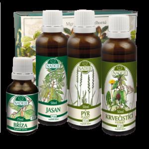 Bylinky na detoxikaci organismu – Doplněk z bylin jako pomoc při detoxikaci a regeneraci organismu