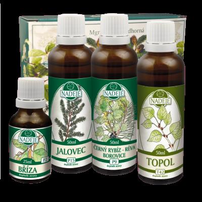Byliny na očistu organismu – Doplněk z bylin pro posílení a podporu detoxikace K24