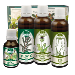 Bylinky na pročištění těla – Doplněk z bylin pro pročištění těla